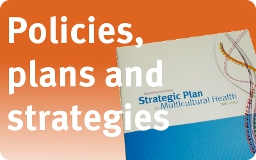 Strategies policies and plans