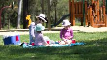 Why not take your grandkids on a picnic these school holidays