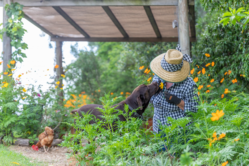 A woman in a straw hand in a garden smells a yellow flower with her dog