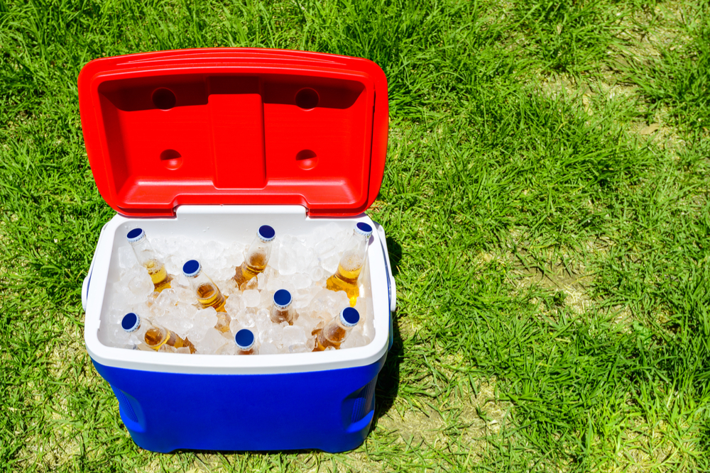 An open esky on a green lawn in the sun, full of ice and beers.