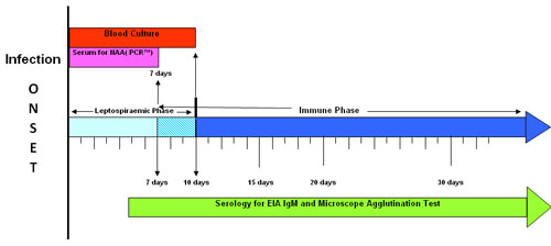 Infection onset graph