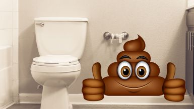 A picture of a toilet with a cartoon drawing of a poo giving a double thumbs up.