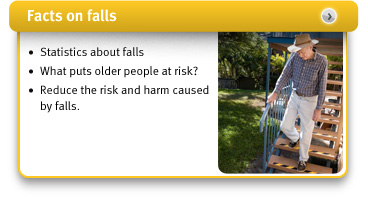 facts on falls image